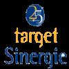 Logo Target Sinergie